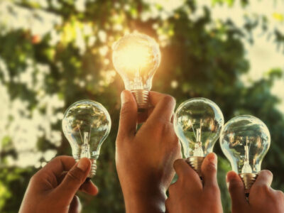 Solar,Energy,Concept,Hand,Group,Holding,Light,Bulb,In,Nature